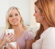 придает форму чашки милые сидя женщины софы молодые Стоковые Изображения