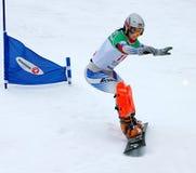 придайте форму чашки европейский snowboard Стоковое Изображение RF