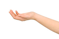 приданная форму чашки рука Стоковые Изображения RF