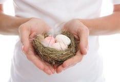 приданное форму чашки сердце рук яичек Стоковые Изображения