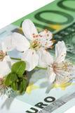 приезжает весна рынков к слишком Стоковые Изображения RF