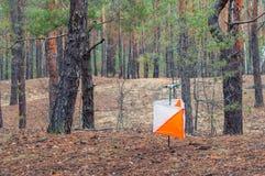 _ Призма и composter заданного значения регулируемой величины для orienteering в лесе осени концепция стоковое фото