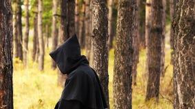 Призрак в древесинах акции видеоматериалы