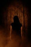 Призрак в лесе стоковая фотография rf