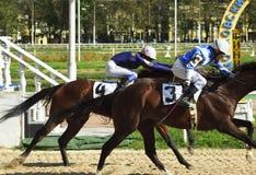 приз horserace Стоковое Изображение RF