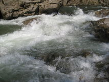 Прикарпатская гора: поток и весна Стоковая Фотография RF