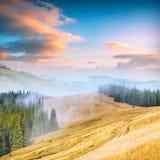 Прикарпатская гора valley_3 Стоковая Фотография