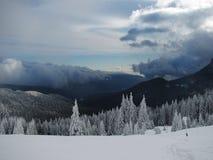 Прикарпатская зима Стоковые Фотографии RF