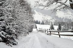Прикарпатская зима Стоковые Изображения RF