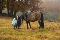 Прикарпатская лошадь Стоковое фото RF