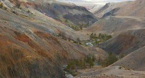 прикарпатская долина Украины горы Стоковое Изображение