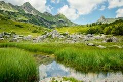 прикарпатская долина Украины горы Стоковое Изображение RF