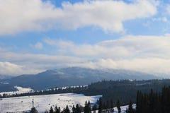 Прикарпатские горы в Украине Стоковое Фото