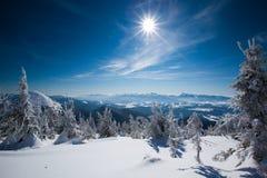 Прикарпатские горы зимы Стоковое фото RF