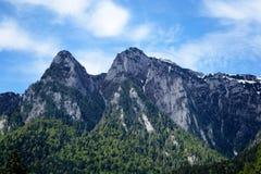 прикарпатские горы Румыния стоковые фото