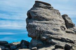 Прикарпатские горы, Румыния Стоковые Изображения RF