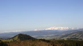 Прикарпатские горы увиденные от Vatra Dornei Стоковые Фото