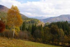 прикарпатские горы Стоковые Фотографии RF