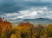 прикарпатский взгляд сверху гор Осень Стоковая Фотография RF