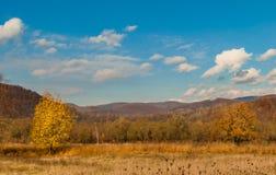 прикарпатский взгляд сверху гор Осень Стоковое Фото