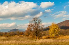 прикарпатский взгляд сверху гор Осень Стоковая Фотография