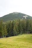 прикарпатский взгляд сверху гор Стоковая Фотография
