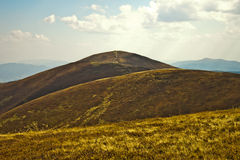 прикарпатский взгляд сверху гор Стоковое фото RF