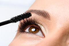 прикладывать женщину mascara ресниц Стоковое Фото