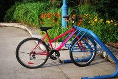 прикрепленный замок велосипеда Стоковые Изображения