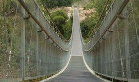 Прикрепленный на петлях мост. Израиль Стоковые Фото