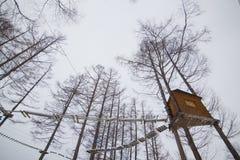 Приключение зимы Стоковые Изображения RF