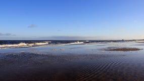 Приливы моря на прибалтийском цвете взморья природы стоковые фотографии rf