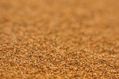 Пример глубины поля текстуры песка постепенно запачканный Стоковая Фотография