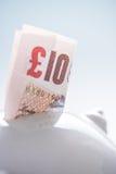 Примечание 10 фунтов великобританское в копилке Стоковое Изображение