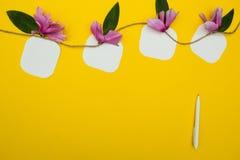 4 примечания на строке с цветками на желтых предпосылке, ручке и месте для текста стоковые фотографии rf
