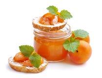 принадлежности Десерт от абрикосов Варенье абрикосов стоковые изображения rf