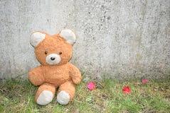 принесите игрушечный стоковая фотография rf