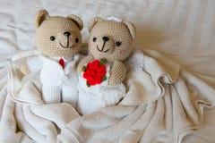 Принесите куклу в влюбленности, медведей с свадьбой, 2 плюшевого медвежонка игрушки на th Стоковые Фотографии RF