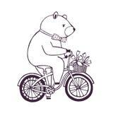 Принесите на велосипеде с корзиной и цветками Иллюстрация контура шаржа на белой предпосылке Стоковая Фотография