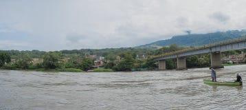 Принимать мост через лес стоковое изображение rf