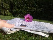 Принимать прессу в саде стоковые изображения rf