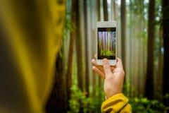 Принимать фото с ее телефоном стоковая фотография