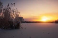 приносит утро упования новое Красочный вечер, яркий свет над рекой или озеро Стоковые Фотографии RF