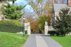Принстонский университет частный университет лиги плюща в Нью-Джерси, США Стоковая Фотография RF