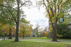 Принстонский университет частный университет лиги плюща в Нью-Джерси, США Стоковое фото RF