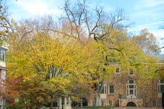 Принстонский университет частный университет лиги плюща в Нью-Джерси, США Стоковые Изображения