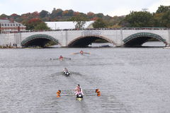 Принстон (дно), Оксфорд (2-ое), Стэнфорд (3-ее), КОСАТКА (4-ое) и Thams Стоковое Изображение