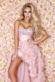 Принцесса, невеста в розовом платье свадьбы Красивая молодая женщина - изображение стоковая фотография rf