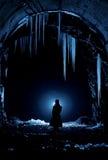 Принцесса льда Стоковые Фотографии RF