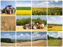 принципиальная схема земледелия Стоковые Фото